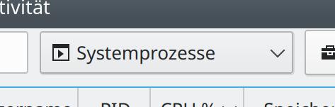Combobox with icon displayed correctly